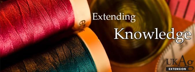 Extending Knowledge