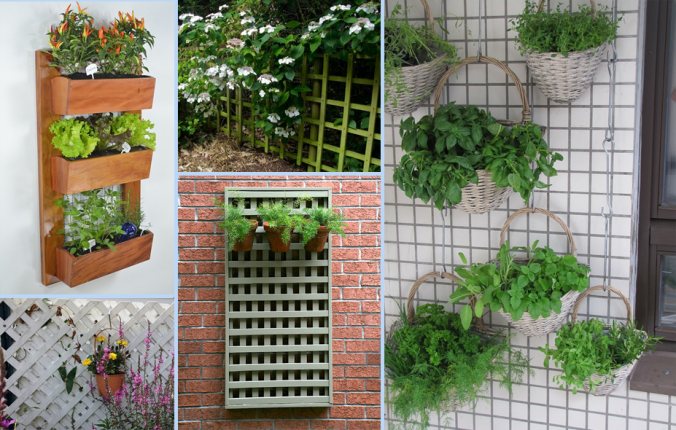 vertical gardening ideas