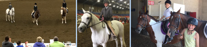 oldham 4-H horse competition