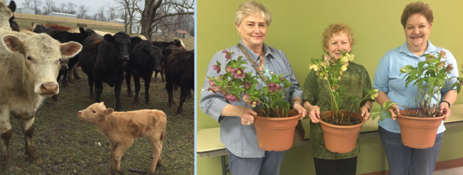 oldham county agriculture calendar