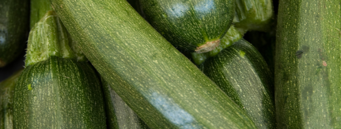 healthy zucchini lasagna