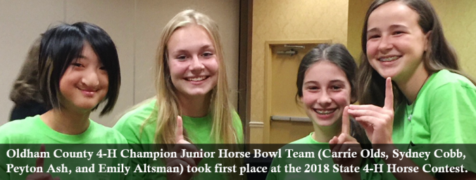 ky 4-h horse contest champs