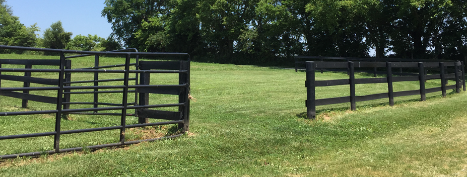 open fence and pasture