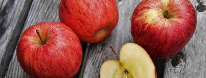 kentucky apple season