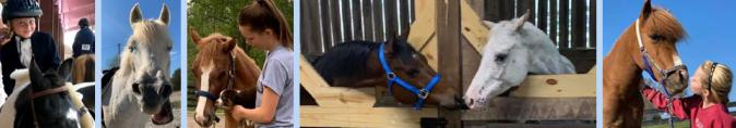 oldham county horse club